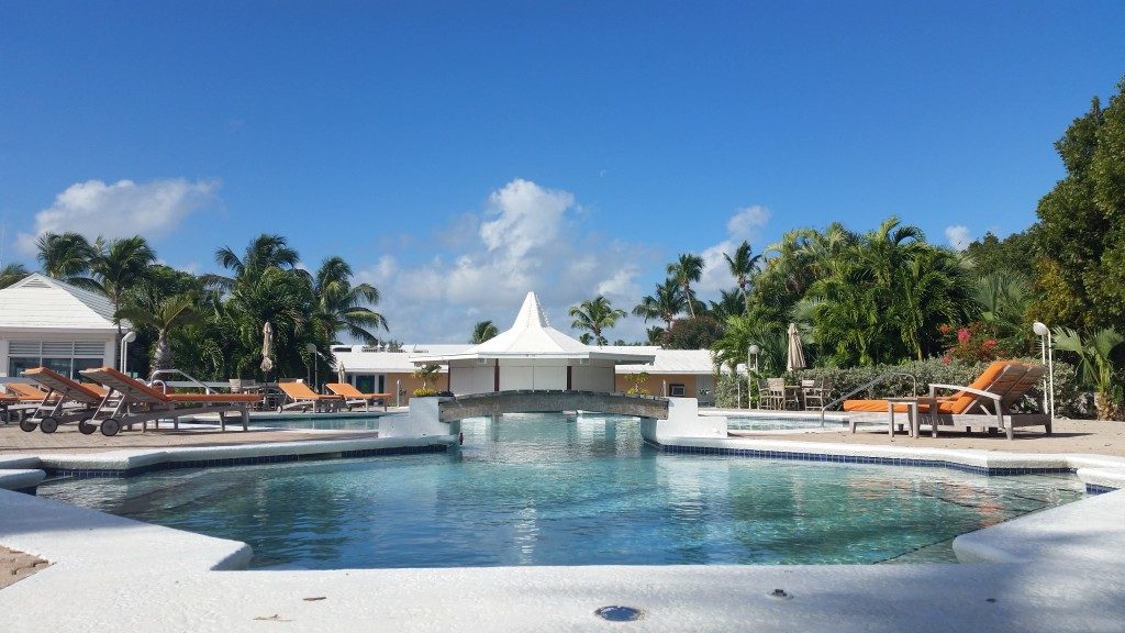Pool with swim up seats by the bar
