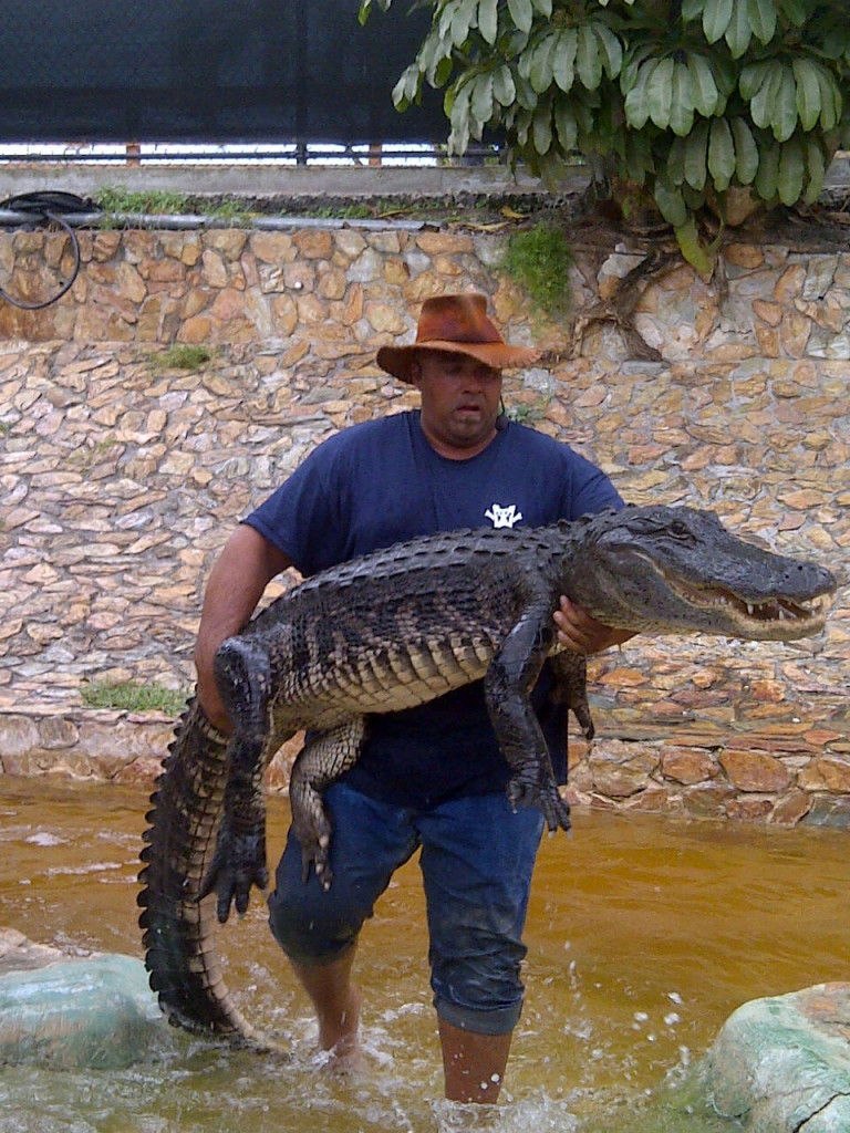 Wrestler carrying an alligator