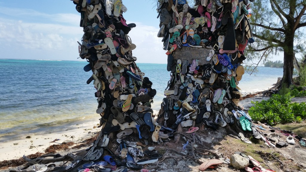 Cayman Shoe Tree on South Sound Road, Grand Cayman