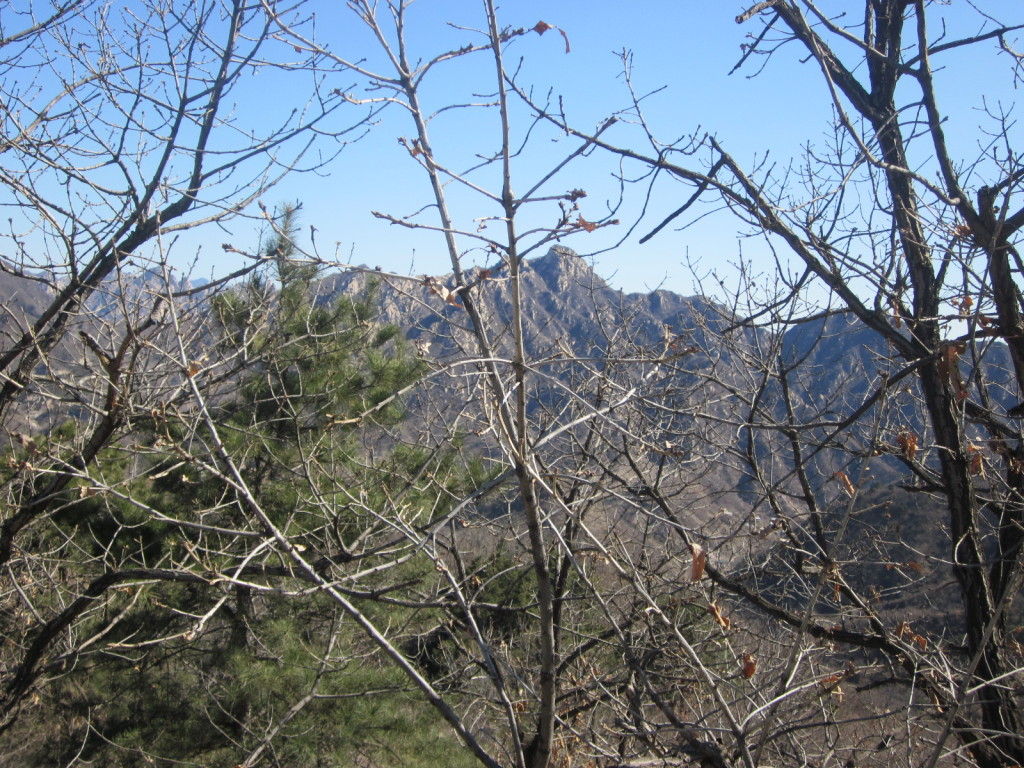 The sparse winter scenery at the Great Wall (March)