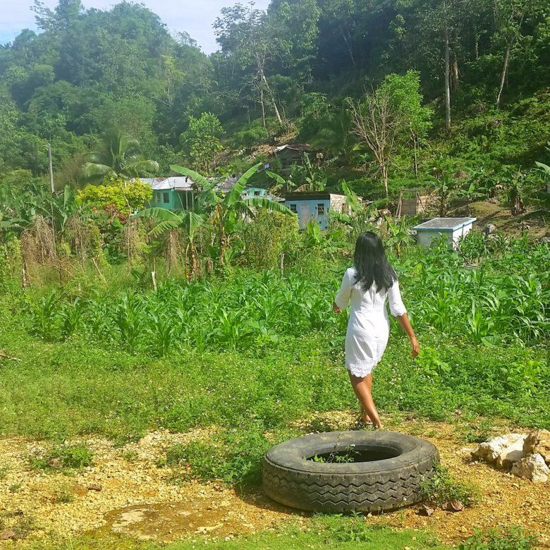 Jamaican Countryside