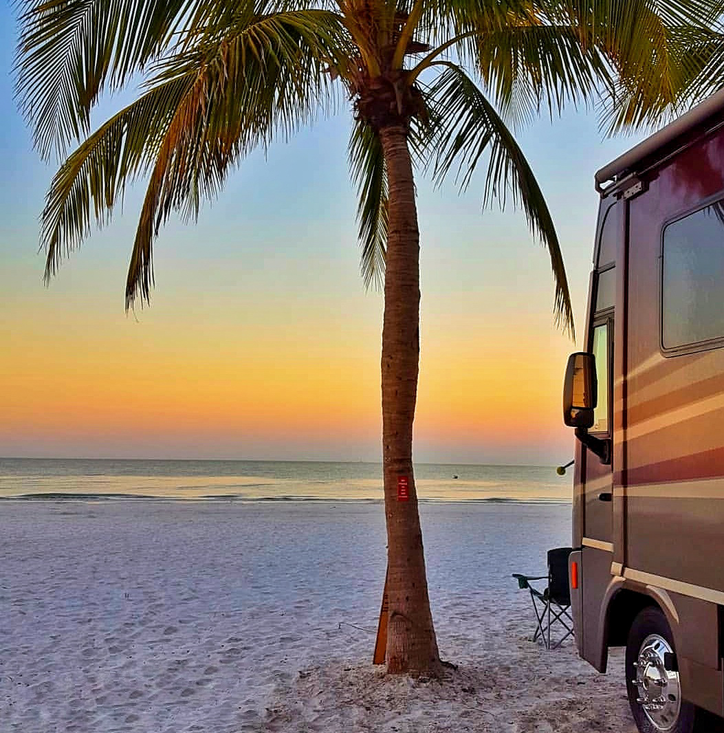 Motorhome parked by the sea showing a palm tree at sunrise